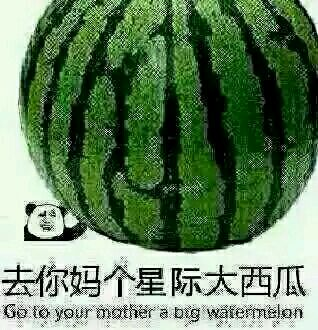QNM个星际大西瓜(Go to your monther a big watermelon)