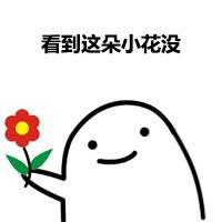 看到这朵小花没