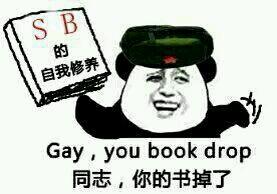 SB的自我八点半,Gay,you book drop(同志,你的书掉了)