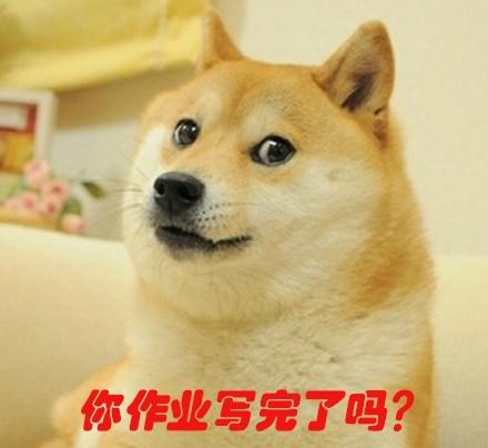 你作业写完了吗?(doge)