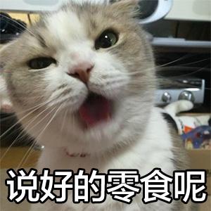 说好的零食呢 - 搞笑猫猫表情 - 斗图大会 - 金馆长库