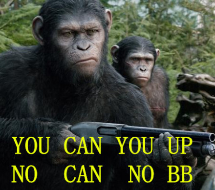 you can you up no can no bb