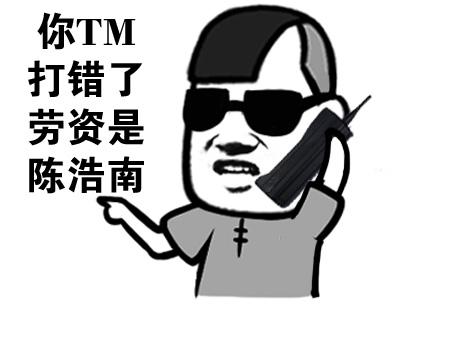你 TM 打错了,劳资是陈浩南