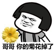 哥,你的菊花掉了