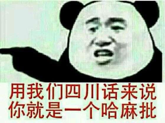 用我们四川话来说,你就是一个哈麻批