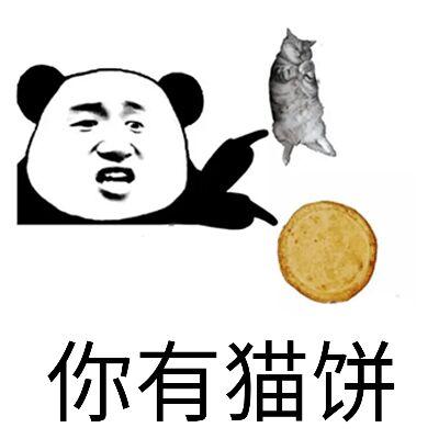 你有猫饼表情