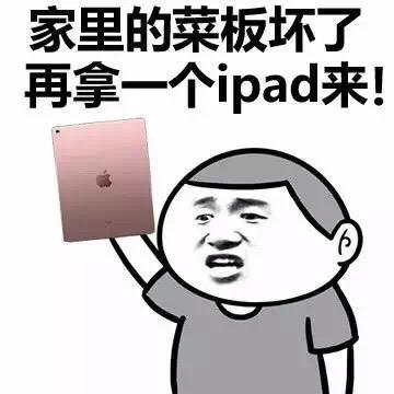 家里的菜板坏了 再拿一个ipad来!