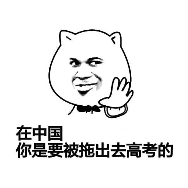 在中国,你是要被拖出去高考的