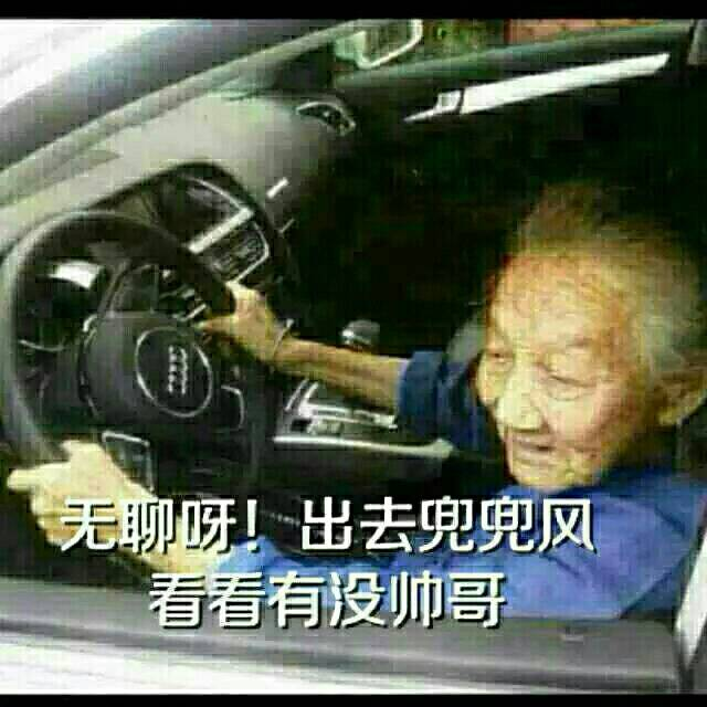金馆长熊猫骂群主_斗图啦 › 无聊斗图表情 - doutula.com