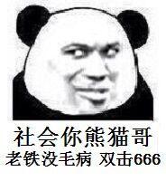 社会釡熊猫哥,老铁没毛病,双击666(熊猫斗图啦)