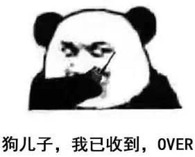 狗锤子,我已收到,OVER(熊猫斗图啦)