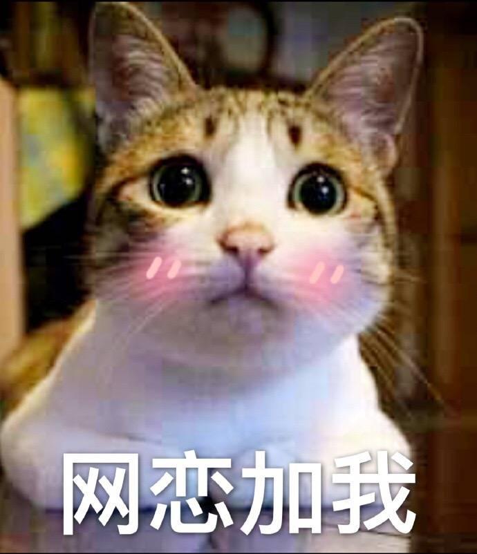 憋说话  吻我表情_网恋加我(小猫) - 斗图表情包 - 金馆长表情库 - 真正的斗图 ...