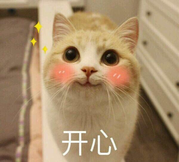 憋说话  吻我表情_开心 - 猫咪表情包 - 斗图表情包 - 金馆长表情库 - 真正的斗图 ...