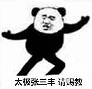 太极张三丰.请赐教 - 熊猫人武林功夫