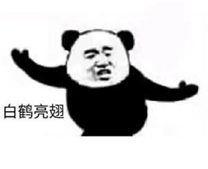 白鹤亮翅 - 熊猫人武林功夫