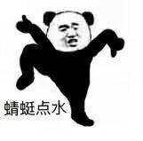 蜻蜓点水 - 熊猫人武林功夫