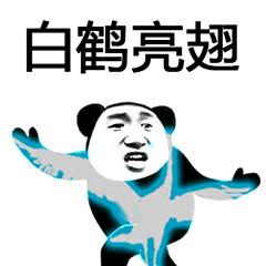 白鹤亮翅(熊猫人功夫系列)