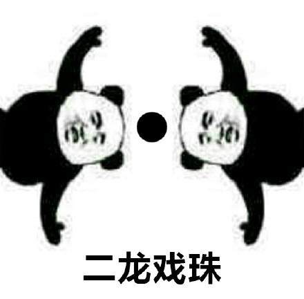 二龙戏珠!(熊猫人功夫系列)