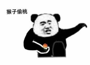 猴子偷桃 - 熊猫人武林功夫
