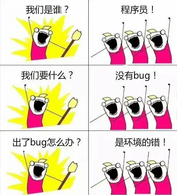 我们是谁?程序员!我们要什么?没有bug!出了bug怎么办?是环境的错!