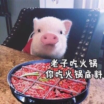 老子吃火锅你吃火锅底数