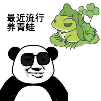 最近流行养青蛙