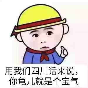 用我们四川话来说,你龟儿就是个宝气
