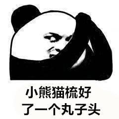 小熊猫梳好了一个丸子头