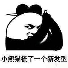 小熊猫梳了一个新发型