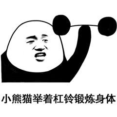 小熊猫举着杠铃锻炼身体