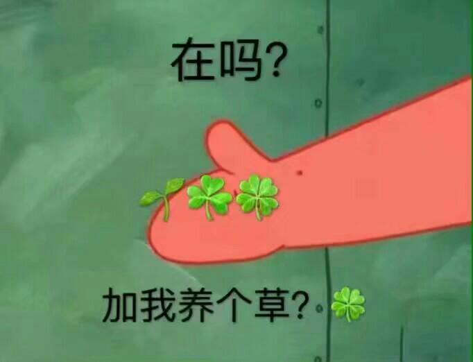 在吗?加我养个草?