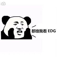都给我看EDG