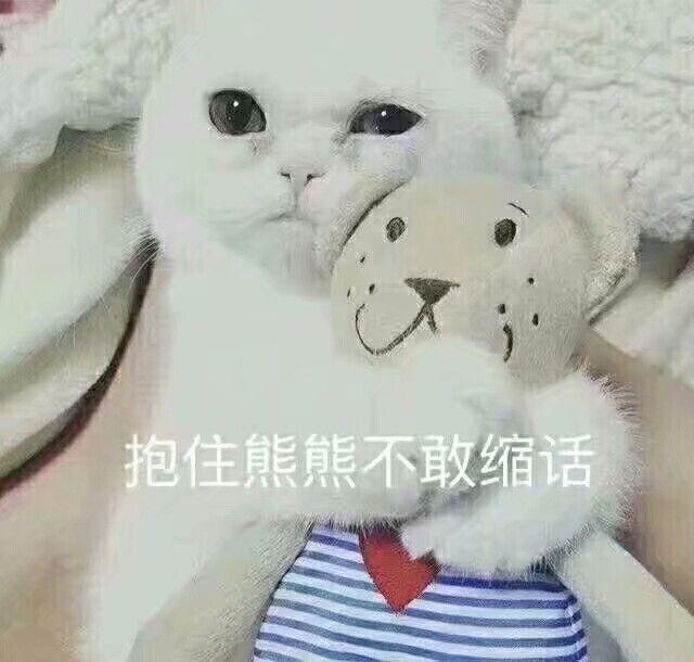 x抱住熊熊不敢缩话